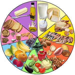 Analyses de composition nutritionnelle